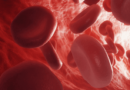 The Importance Of Hemoglobin
